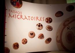 Migratory Passages