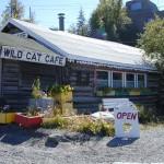 Wildcat Cafe