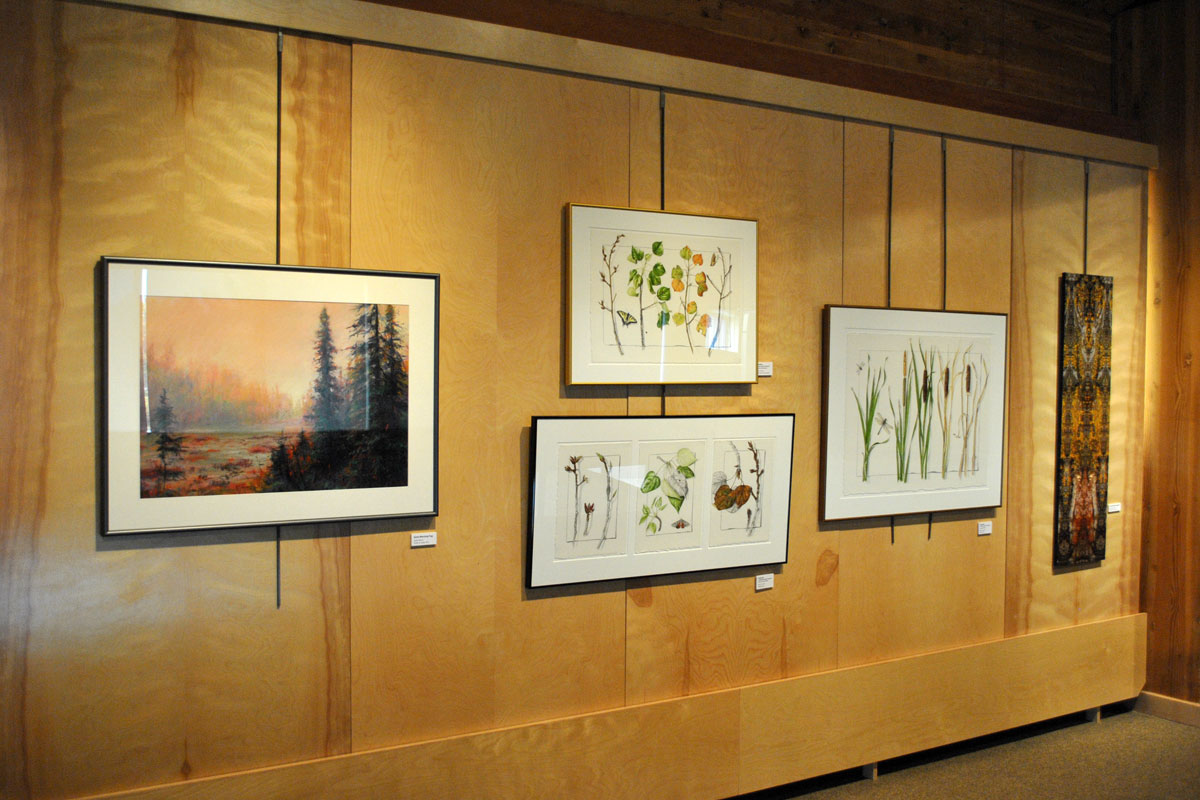 Facing North: Coyotes' Artist Collective