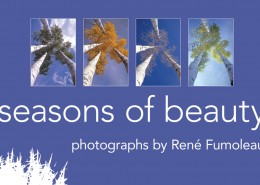 Seasons of Beauty