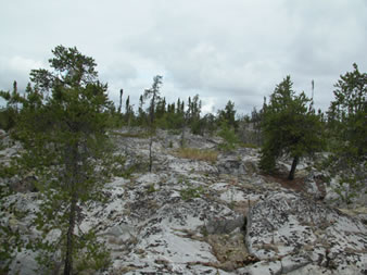 View of Quarry at KM 30.1 of the Ingraham Trail.