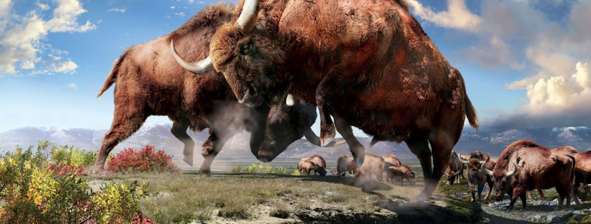 Ice Age Bison Exhibit