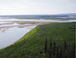 East end of the proposed access road on the banks of the Mackenzie River.