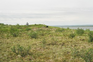 View to the west of a small buried lithic scatter located east of Parsons Lake