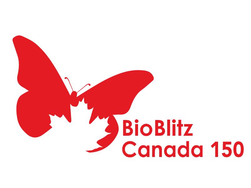 Bioblitz