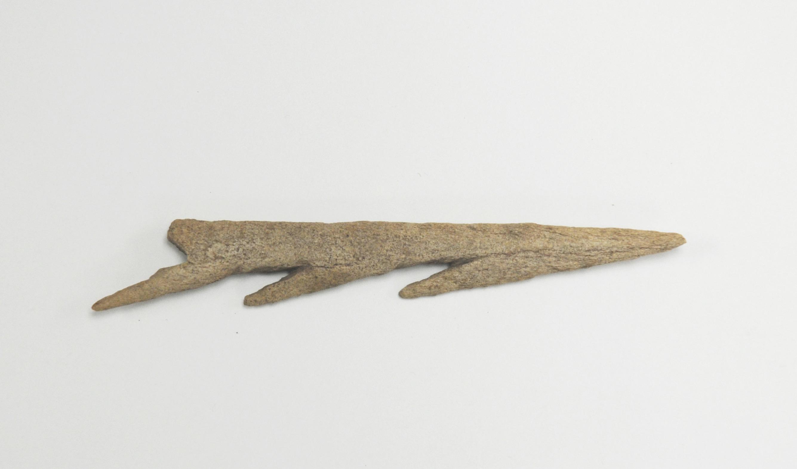 Fish spear